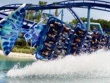 SeaWorld Orlando Manta